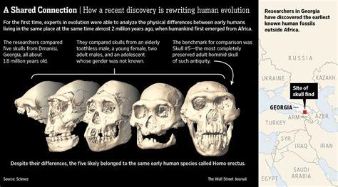 Race Skull Comparison