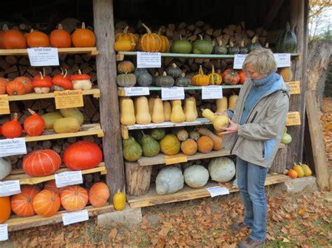 Latvijas pārtikas ražotāji tiešsaistes diskusijā dalās ...