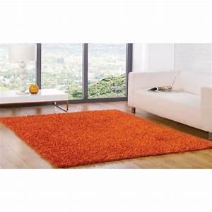 Tapis A Poils Long : tapis poils long spider orange cm 110x160 achat vente tapis cdiscount ~ Teatrodelosmanantiales.com Idées de Décoration