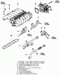 Intake Manifold Gasket Diagram