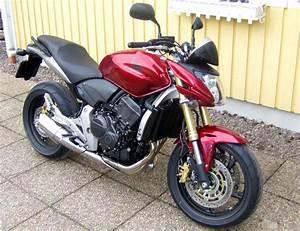 Honda Moto Orleans : 2005 honda hornet 250 moto zombdrive com ~ Maxctalentgroup.com Avis de Voitures
