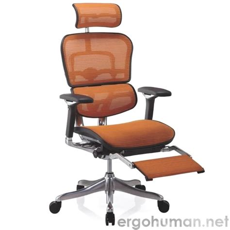 ergohuman office chairs just another ergohuman chair to go
