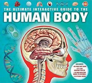 Ultimate Interactive Guide To Human Body By Camilla De La