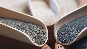Grau Blau Farbe : mohnsamen mohn kaufen und verwenden ~ Markanthonyermac.com Haus und Dekorationen