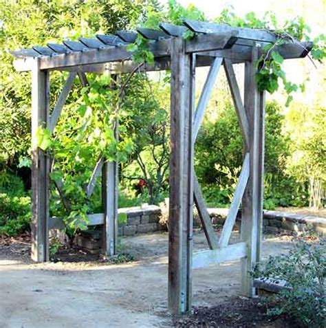diy grape arbor  building plan