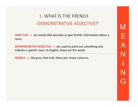 french demonstrative adjectives  pronouns