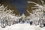 The Best of Berlin on this Christmas | City Breaks and ...