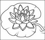 Coloring Water Lily Pages Flowers Flower Patterns Lilies Printable Drawing Number Easy Coloritbynumbers Printables Wood Burning Painting Glass Stained Name sketch template