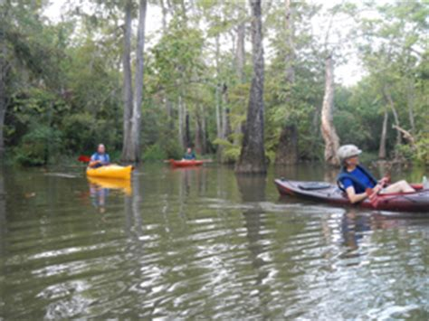 Tpwd State Tx Us Boat Renewal by Tpwd Cooks Lake To Scatterman Paddling Trail