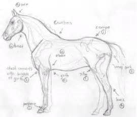How to Draw a Horse Drawing Tutorial