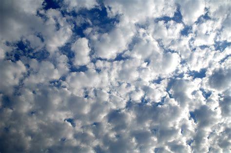 California Cullumber Family: Puffy Clouds