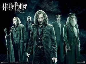 Order of the Phoenix - Harry Potter Wallpaper (28127896 ...