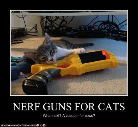 nerf guns  cats cheezburger funny memes funny