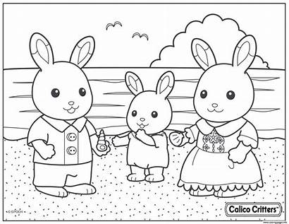 Critters Coloring Calico Pages Beach Shell Printable