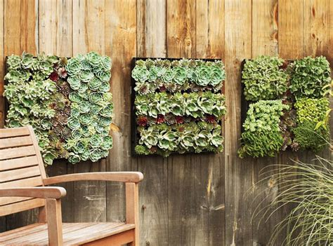 garden wall planter outdoor living wall planters the green