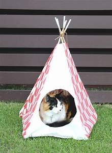 purr fect diy cat and dog bed ideas bite sized biggie With dog and teepee