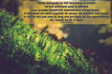 les plus belles citations en photos citation sur la vie