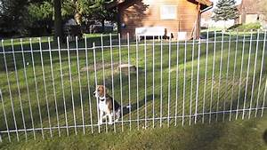 Kleiner Zaun Für Hunde : kunden video aus sterreich gartenzaun anneau 145 verzinkt 37 lfm youtube ~ Sanjose-hotels-ca.com Haus und Dekorationen