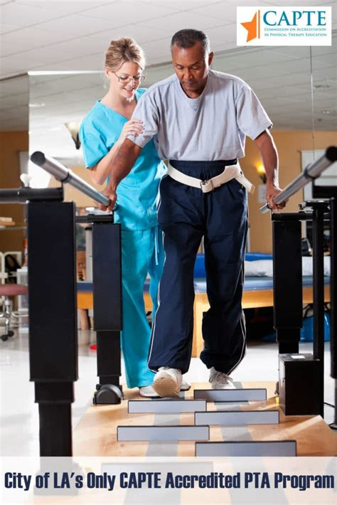 Physical Therapist Assistant  Cbd College. Simple Resume Builder Free Template. Sample Of Certificate Template Ai Free. Student Resume Format Download. Homeowners Insurance Declaration Page Sample. Sample Technical Support Resumes Template. Create A Google Spreadsheet. Reference Letter For Teaching Template. Windows 8 1 Install Template