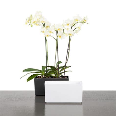 Garden Igloo Erfahrungen by Www Design 3000 De Erfahrungen Mit Design Design