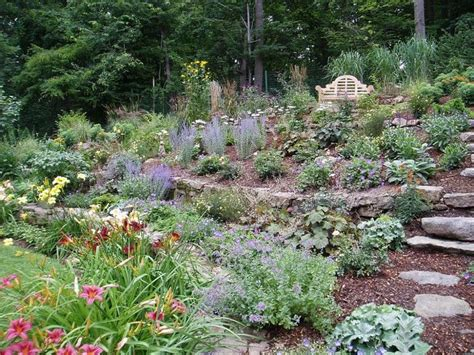 gardening on a hillside hillside planting garden pinterest gardens garden ideas and terrace