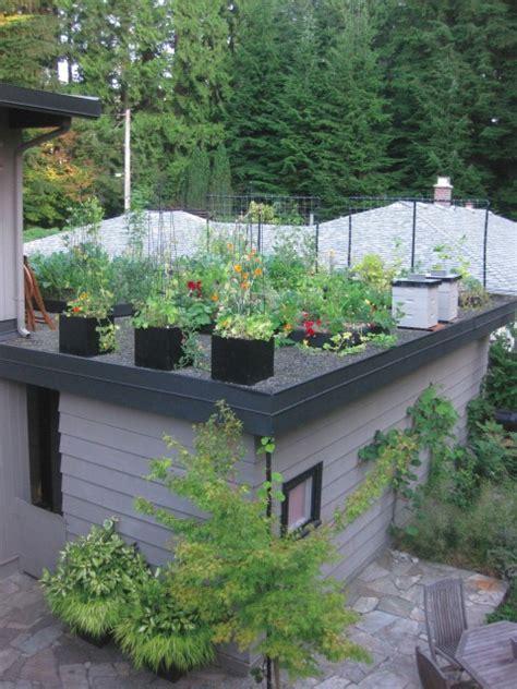 how to rooftop garden grow up build an edible rooftop garden garden therapy
