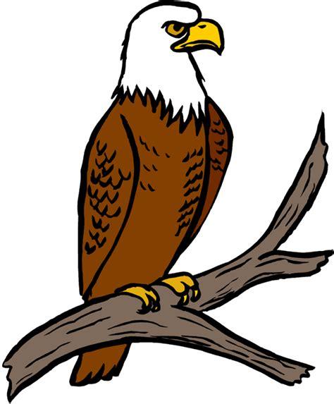 Bald Eagle Clip Eagle Pictures Clip 101 Clip