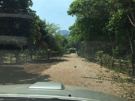 House and land for sale Plot size 400 sqm.   Houses