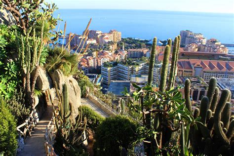 Jardin Exotique De Monaco Cactuses And Breathtaking