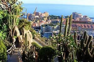 Jardin exotique de monaco cactuses and breathtaking for Jardin exotique monaco