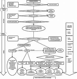 Flow Chart For The Management Of Patients With Persisting