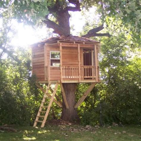 how much does it cost to remodel a chicago illinois tree house pictures of tree houses