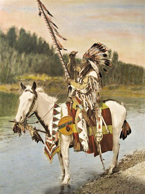 canada alberta museum cavallo dyr hest indiano native indian horse nativo painting oil pack domain immagini animal gratis