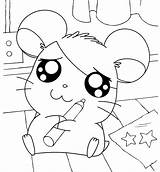 Hamtaro Coloring Pages Printables Lily sketch template