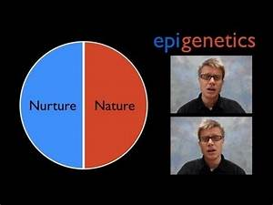 Epigenetics — bozemanscience