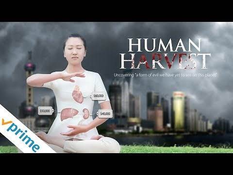 Human Harvest | Trailer | Available now