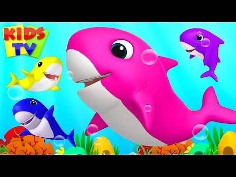 Baby Shark Song | Boom Buddies Cartoons | Kids Songs & Nursery Rhymes for Toddlers
