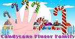 Candy Cane Finger Family   English Nursery Rhymes for Kids