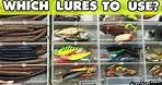 What Lure Should I Use? - Fishing 101