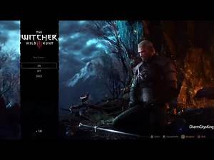 The Witcher 3 Wild Hunt New Game Problem