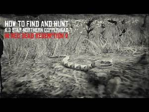 Red Dead Redemption 2 Perfect Northern Copperhead Hunt