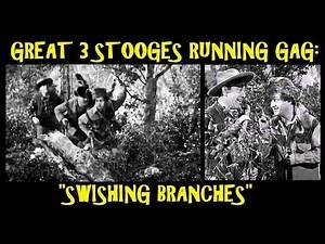 """Great 3 Stooges Running Gag: """"Swishing Branches"""""""