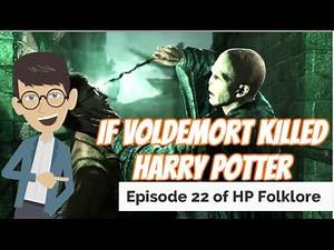 If Voldemort Killed Harry Potter Theory