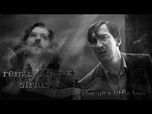 remus lupin sirius black   give us a little love   harry potter