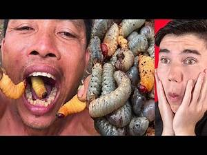 FINDING & EATING COCONUT WORMS PRIMITIVE CULTURE!