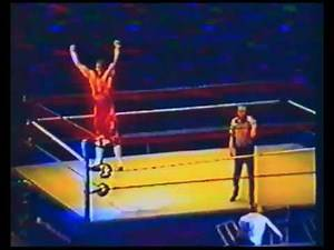 WWF @ Boston Garden 13.05.1995 (Handheld)