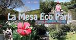 La Mesa Eco Park- Morning walk + Photographs 2/7/2021 - Quezon City, Philippines