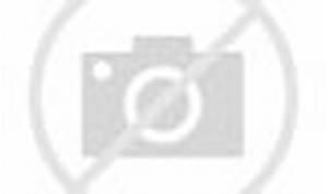 Jackman & Stewart talk Logan