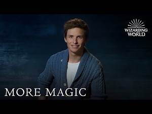 Fantastic Beasts Sweepstakes – Last Chance to Enter | Lumos