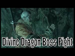 Sekiro Shadows Die Twice Divine Dragon Boss Fight (Dragon Tears)